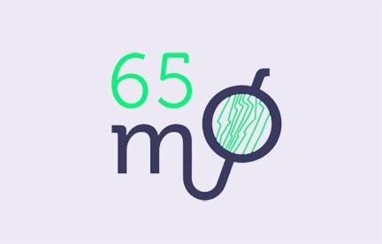 65 MO